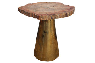 FRN744: Fossilized Wood and Brass Cone Table
